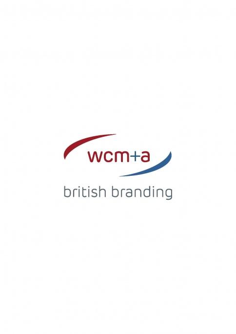 WCM&A Ltd - Team DISC